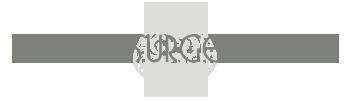Plastic Surgery Ace logo